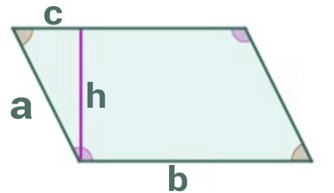 Área romboide