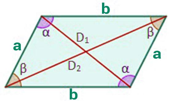 Partes romboide